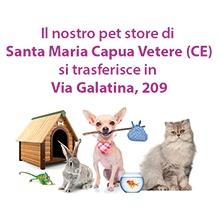 Notizie dal blog: Il pet shop di Santa Maria Capua Vetere si trasferisce