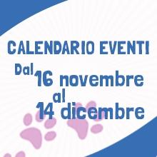 Notizie dal blog: Tutti gli eventi fino al 14 dicembre