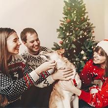 Notizie dal blog: Animali e Capodanno: come comportarsi in caso di botti