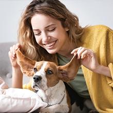 Notizie dal blog: Attività da fare con il tuo cane durante l'inverno