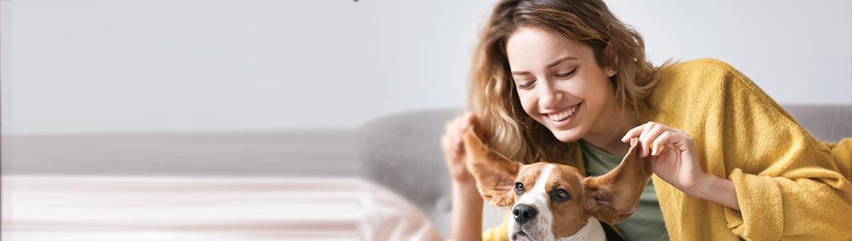 Attività da fare con il tuo cane durante l'inverno