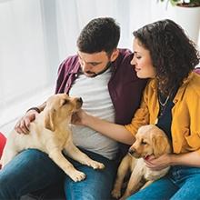 Notizie dal blog: Cosa sapere prima di accogliere un animale domestico