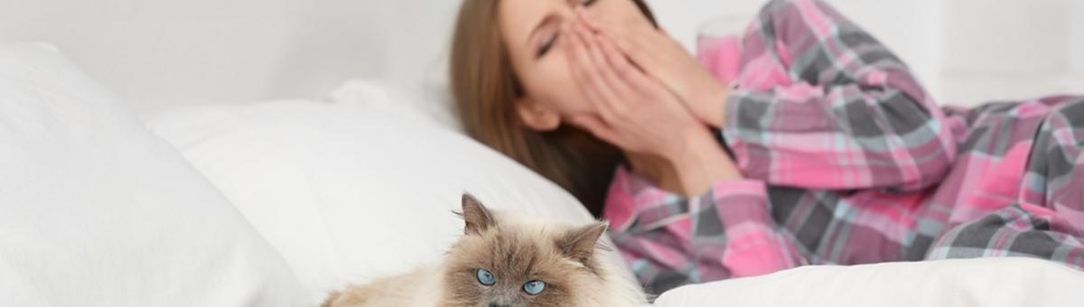 L'allergia al pelo di cane e gatto: tutto ciò che devi sapere