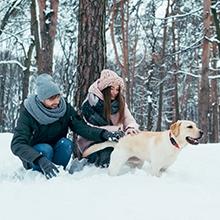 Notizie dal blog: Vacanze invernali con i nostri amici a 4 zampe
