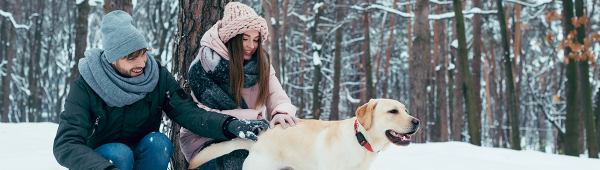 Vacanze invernali con i nostri amici a 4 zampe