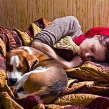 Notizie dal blog: Dormire con il proprio cane: sì o no?