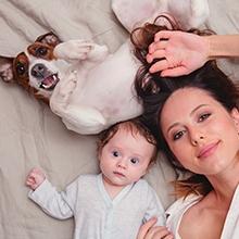 Notizie dal blog: Come preparare il tuo amico a 4 zampe all'arrivo di un bebè