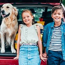 Notizie dal blog: A cosa devo prestare attenzione in viaggio con il cane?