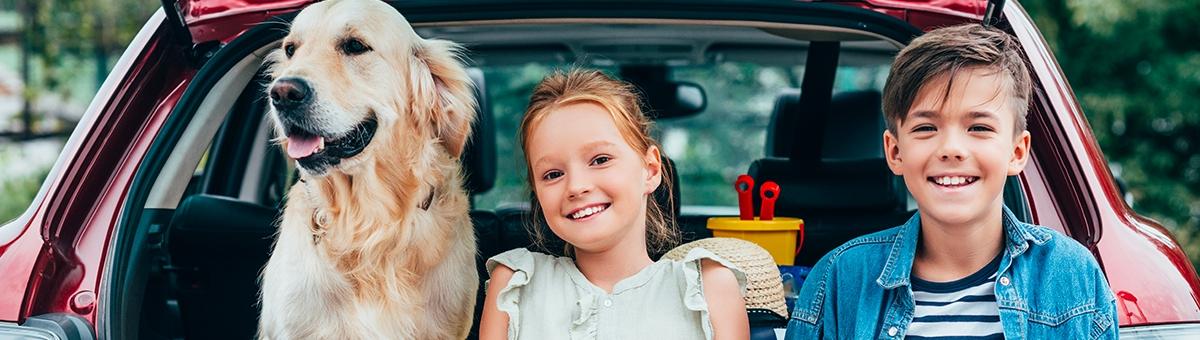 A cosa devo prestare attenzione in viaggio con il cane?