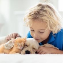 Notizie dal blog: I benefici della Pet Therapy