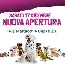 Notizie dal blog: Nuova apertura - Sabato 17 dicembre - Cesa