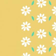 Notizie dal blog: Orari festività Aprile/Maggio