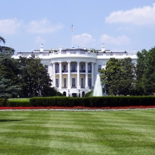 Notizie dal blog: I cuccioli alla Casa Bianca