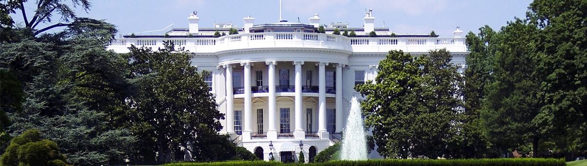 I cuccioli alla Casa Bianca