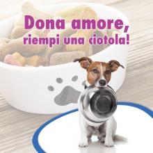 Notizie dal blog: Raccolta alimentare - 27 gennaio - Aversa (CE)