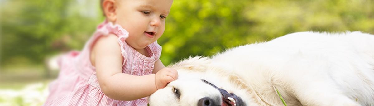 Bambini e animali: tutto quello che c'è da sapere